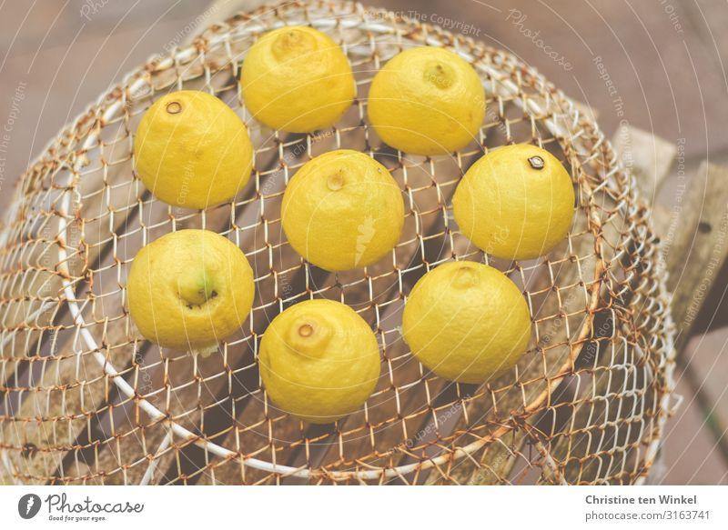 Zitronen auf einem Drahtkorb, der auf einem Holzstuhl steht Lebensmittel Frucht Ernährung Korb Gitter Metall liegen ästhetisch außergewöhnlich frech