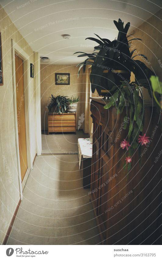 zuhause Zuhause Wohnung Häusliches Leben alt retro altes Haus alte Wohnung früher Eltern Großeltern Elternhaus Flur Schrank Topfpflanze Kaktus Blüte