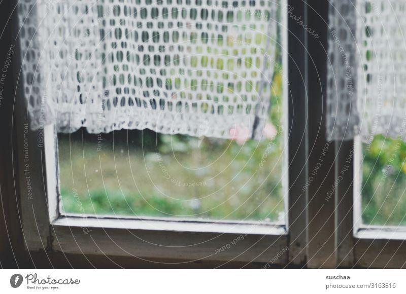 das fenster zum garten Fenster alt Gardine Vorhang Fensterrahmen verwittert verfallen Vergänglichkeit Vergangenheit Fensterscheibe Glasscheibe Durchblick