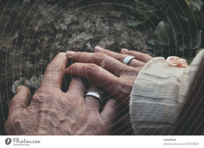 Zusammensein Zusammenhalt Bund Bund für's Leben Ehe schwören Hochzeit Heirat Ehering Hand Finger weiblich männlich Bedeutung Zukunft Symbole & Metaphern Wunsch