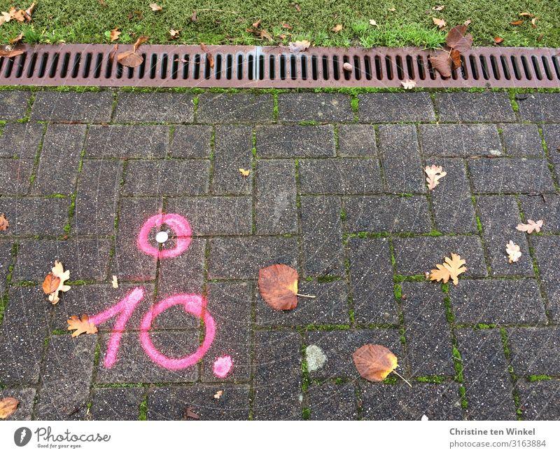 pinkfarbene 10 auf gepflastertem Weg Gras Blatt Wege & Pfade Stein Metall Ziffern & Zahlen Schilder & Markierungen Graffiti Linie Kreis Coolness eckig rosa