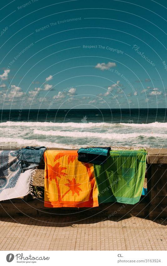 cefalù Ferien & Urlaub & Reisen Tourismus Ausflug Ferne Freiheit Sommer Sommerurlaub Sonnenbad Strand Meer Wellen Wasser Himmel Wolken Schönes Wetter Palme