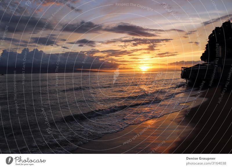 Sunset by the sea in Hawaii Erholung Ferien & Urlaub & Reisen Sommer Strand Meer Umwelt Natur Landschaft Sand Wasser Klima Klimawandel Wetter Kraft ocean