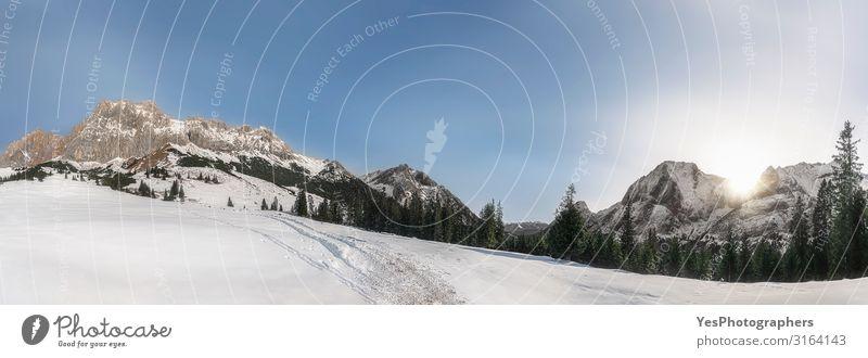 Winterpanorama mit verschneiten Alpenbergen. Schneebedeckte Natur Sonne Berge u. Gebirge Landschaft Klimawandel Wetter Schönes Wetter Gipfel hell weiß Ehrwald