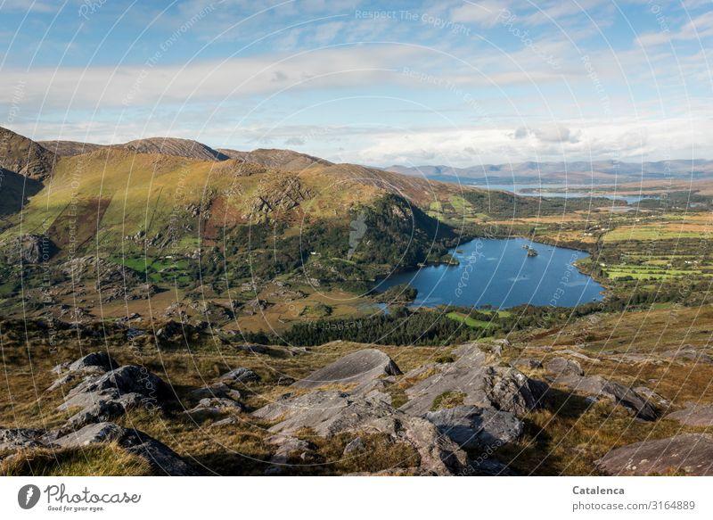 Ein schöner See in Irland Himmel Natur blau grün Landschaft Baum Wolken Berge u. Gebirge Herbst Umwelt Wiese Gras braun Felsen