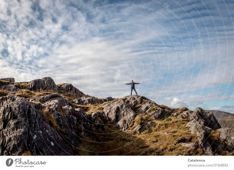 Auf dem Weg nach oben androgyn 1 Mensch Natur Landschaft Himmel Wolken Herbst Schönes Wetter Gras Felsen Berge u. Gebirge Klippe Nordirland stehen wandern Ferne