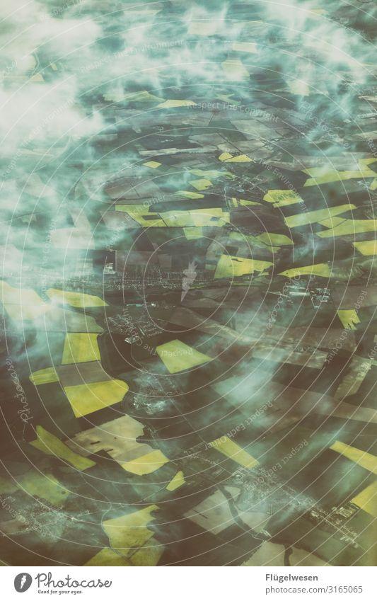 Felder Natur Landschaft Ferne Lebensmittel Umwelt Wiese Freiheit Ausflug Nebel Wachstum Blühend Klima Klimawandel Grasland Raps