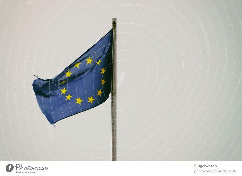 Europa Europafahne Europatag Europäer Stern (Symbol) Fahne wehen Wind Gesellschaft (Soziologie) Amerika Stadt Länder Politik & Staat Zusammensein Zusammenhalt