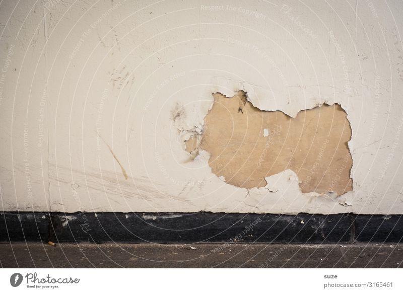 Hausschwein Häärbärt alt Wand lustig Kunst Fassade dreckig authentisch Vergänglichkeit kaputt Vergangenheit Beton Verfall tierisch Loch Straßenkunst Putz