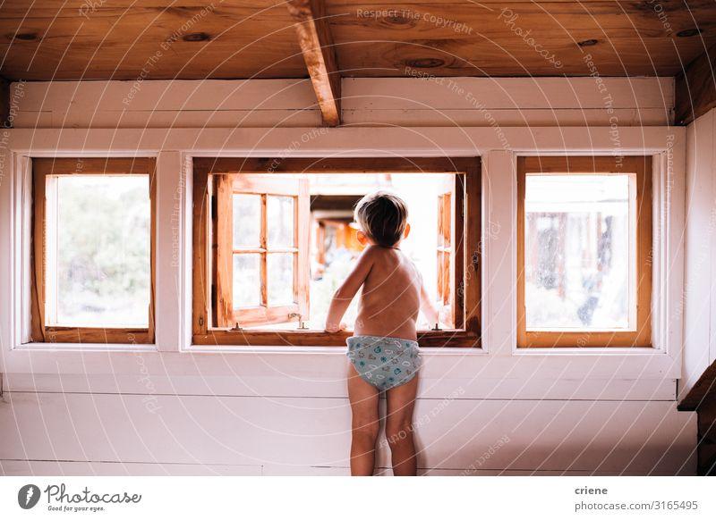 Neugieriges Kleinkind schaut aus dem Kabinenfenster. Lifestyle Glück schön Kind Mensch natürlich Fenster heimwärts Menschen Raum Innenbereich Innenaufnahme