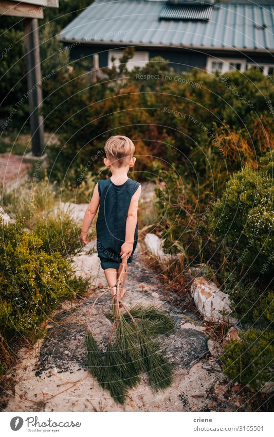 Kind Mensch Natur Sommer Freude Wald Glück Junge wandern Park Aktion laufen