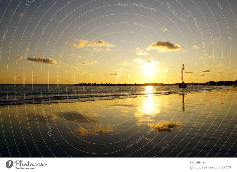Perfekter Abend Umwelt Natur Landschaft Urelemente Erde Sand Wasser Himmel Wolken Sonne Schönes Wetter Wellen Küste Strand Nordsee Meer Insel hell maritim nass