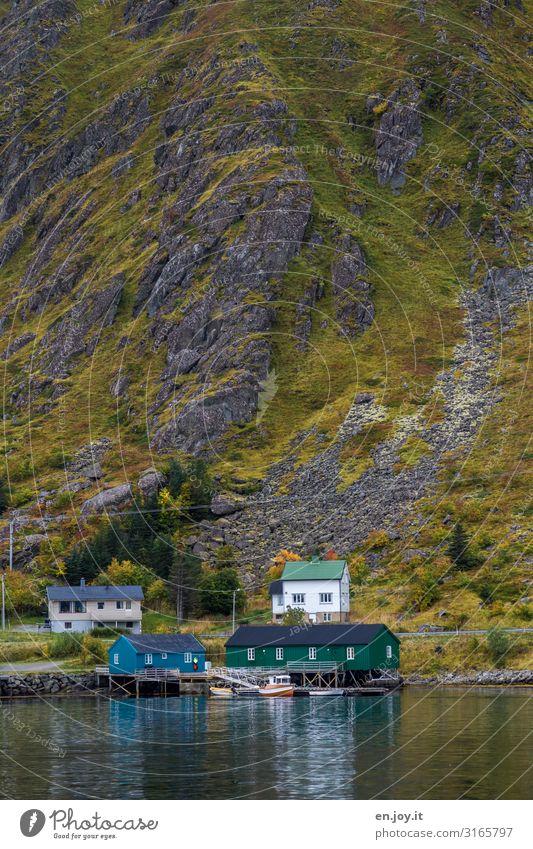 Berge und Meer Ferien & Urlaub & Reisen Ausflug Umwelt Natur Landschaft Herbst Felsen Berge u. Gebirge Küste Fjord Ballstad Norwegen Norwegenurlaub Skandinavien