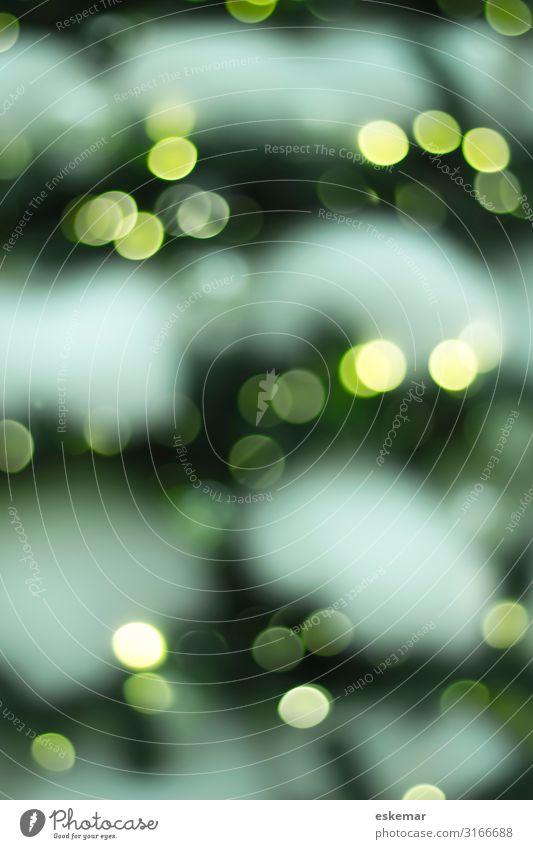 Bokeh Lifestyle elegant Stil Design Feste & Feiern Weihnachten & Advent Silvester u. Neujahr Kunst Hintergrundbild Baum Weihnachtsbaum Dekoration & Verzierung
