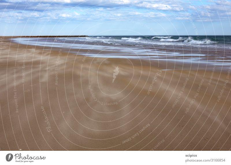 Wind und Wellen Leben Ferien & Urlaub & Reisen Tourismus Meer Schwimmen & Baden Umwelt Landschaft Wasser Himmel Wolken Horizont Sturm Küste Strand Ostsee Stein