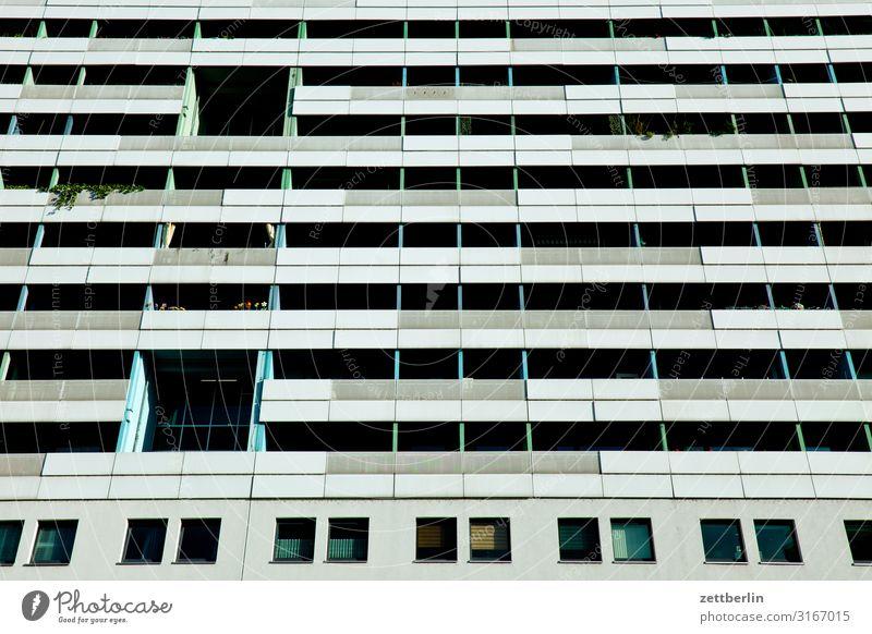 Wohnen im Hochhaus Pflanze Stadt grün Blume Haus Fenster Architektur Leben Traurigkeit Textfreiraum Fassade Stadtleben trist Beton Wohnhaus