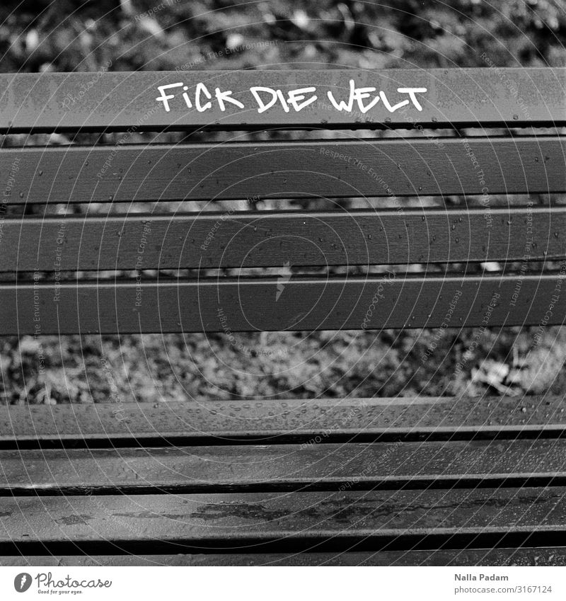 Dick Wie Felt Bochum Deutschland Europa Stadt Menschenleer Holz Graffiti sitzen grau schwarz Ärger gereizt Frustration Verbitterung Kommunizieren Bank Parkbank