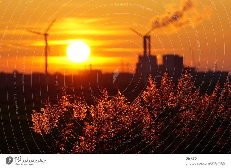 Im Widerstreit - Natur, Industrie, saubere Energie? Wirtschaft Energiewirtschaft Erneuerbare Energie Windkraftanlage Kohlekraftwerk Energiekrise Horizont Sonne