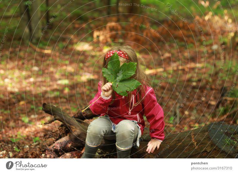 Kind sitzt auf einer Baumwurzel im Wald und hält sich ein großes grünes Blatt vors Gesicht. Verstecken Freude Freizeit & Hobby Spielen Kinderspiel Abenteuer