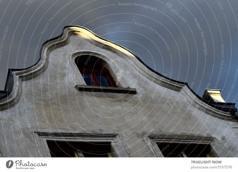Renaissance? Giebel in Babelsberg Potsdam-Babelsberg Hauptstadt Altstadt Haus Einfamilienhaus Bauwerk Gebäude Architektur Denkmal Fassade Kamin Fenster Dach