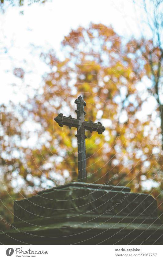 Kreuz Grabstätte Friedhof Senior Leben träumen Traurigkeit Gefühle Mitgefühl trösten Sorge Trauer Tod Christliches Kreuz Farbfoto Außenaufnahme Menschenleer