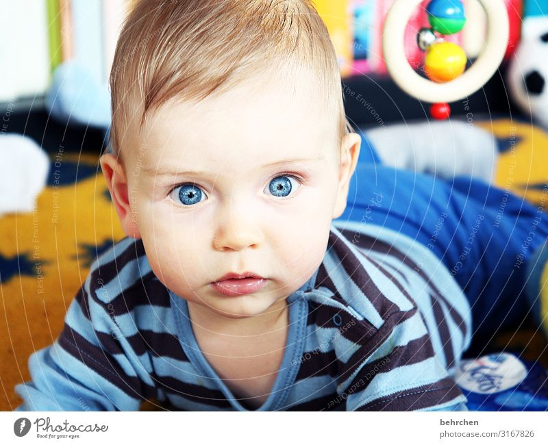 staunen blaue augen Baby Junge Vater Mutter Familie & Verwandtschaft Kindheit Auge Gesicht Kopf Haut Ohr Nase Schutz Vertrauen 0-12 Monate Geborgenheit träumen