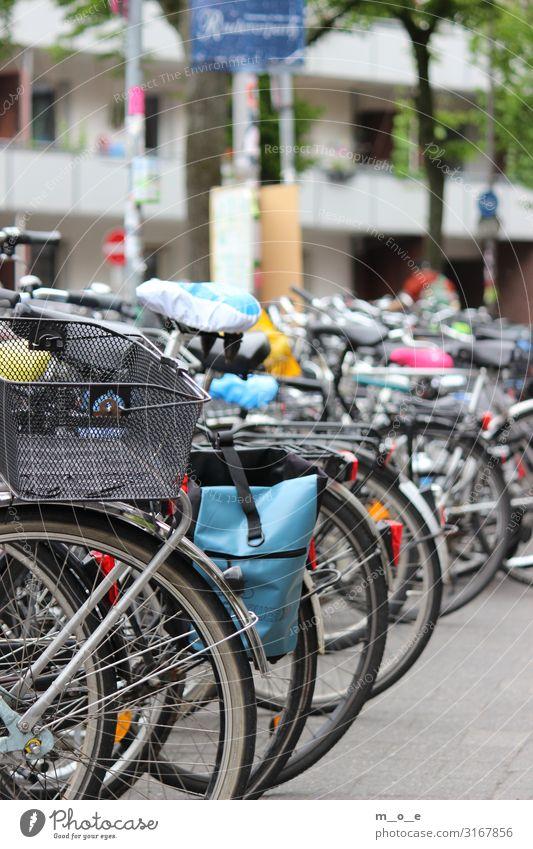 Fahrräder in Münster Fahrradtour Frühling Sommer Stadt Stadtzentrum bevölkert Fahrradfahren Straße Verkehrszeichen Verkehrsschild Stein warten authentisch