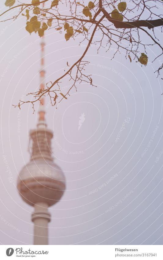 Du bist so wunderbar [1] Berlin Flughafen Berlin-Tegel Berliner Mauer Berliner Fernsehturm Einheit Wiedervereinigung Revolution Wende DDR DDR-Flagge Deutschland