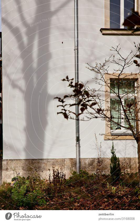 Unbekanntes Gebäude Altbau Haus Wohnhaus Wand Mauer Wohngebiet Häusliches Leben Stadt Stadtzentrum Textfreiraum Stadthaus Mehrfamilienhaus Fassade Fenster