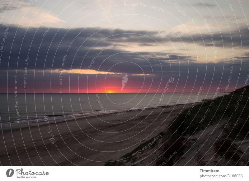 Abends auf der Düne Ferien & Urlaub & Reisen Umwelt Natur Urelemente Sand Luft Wasser Himmel Wolken Nachthimmel Sonnenaufgang Sonnenuntergang Schönes Wetter