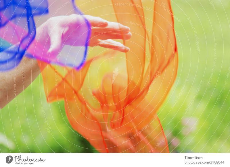 Bunte Tücher fangen Freizeit & Hobby Hand 1 Mensch Park Wiese Jongliertücher Kunststoff werfen blau mehrfarbig grün orange rot Gefühle Freude Sport jonglieren