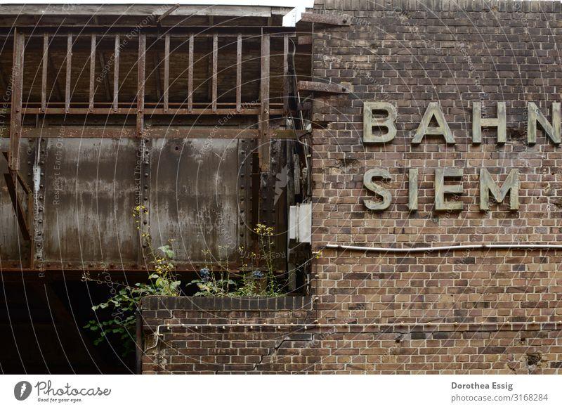 Abgefahren Berlin Hauptstadt Bahnhof Mauer Wand S-Bahnhof Brücke Schriftzeichen alt kaputt stagnierend Verfall Zerstörung Vergänglichkeit vergessen Farbfoto
