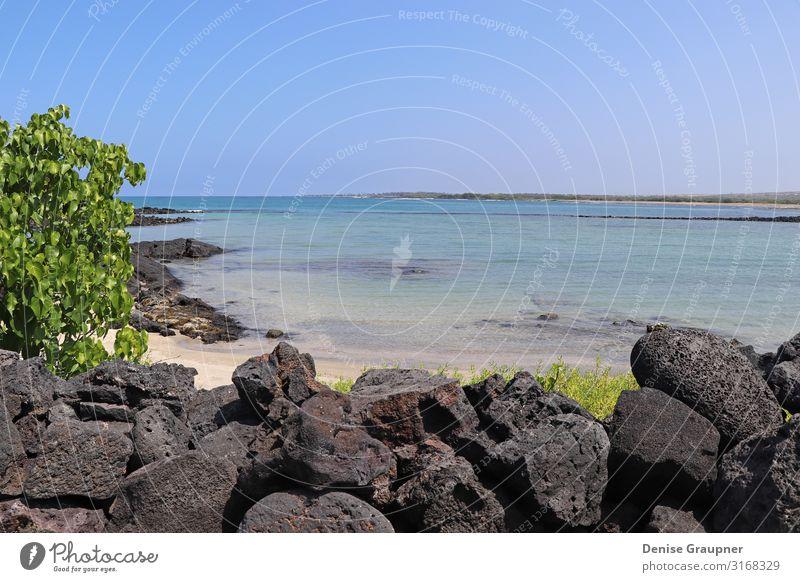 Beautiful view of the sea in Hawaii Ferien & Urlaub & Reisen Tourismus Ausflug Abenteuer Ferne Freiheit Sightseeing Expedition Sommer Sommerurlaub Sonne