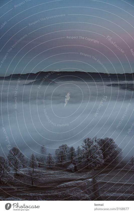 Abend eines kalten Tages harmonisch Wohlgefühl Zufriedenheit Sinnesorgane Erholung ruhig Ausflug Abenteuer Ferne Freiheit Winter Winterurlaub Natur Landschaft