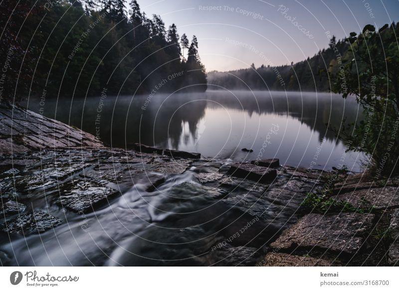 Zufluss Natur Wasser Landschaft Baum Erholung ruhig Wald dunkel Leben Frühling natürlich Freiheit Stein See Ausflug Zufriedenheit
