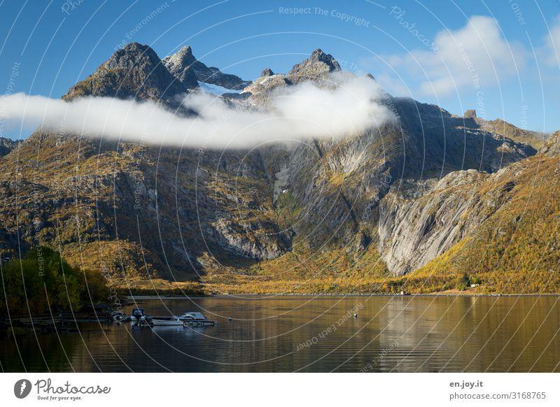 hängen bleiben Ferien & Urlaub & Reisen Ausflug Umwelt Natur Landschaft Himmel Wolken Herbst Schönes Wetter Felsen Berge u. Gebirge Gipfel Fjord Lofoten