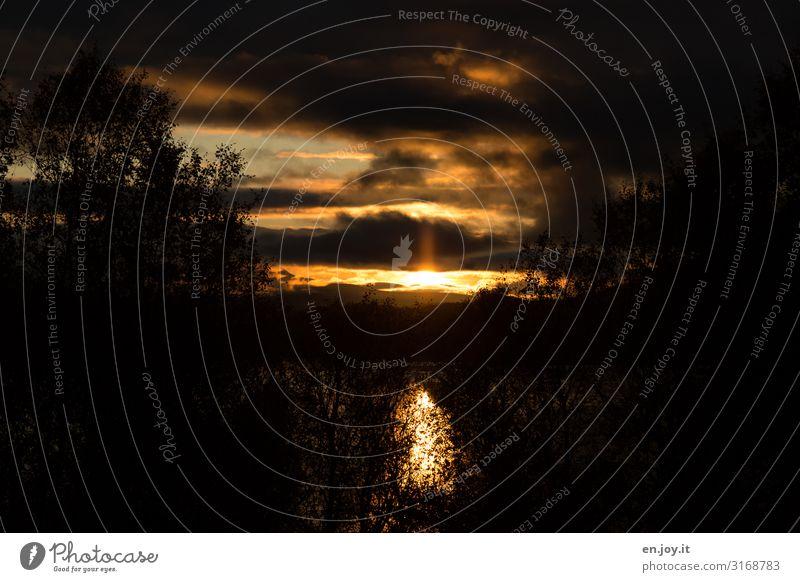 Feierabend Natur Landschaft Sonnenaufgang Sonnenuntergang dunkel schwarz Traurigkeit Sorge Trauer Tod Liebeskummer Endzeitstimmung Hoffnung Klima