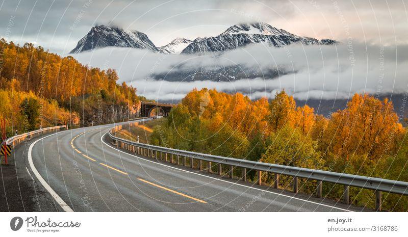 freie Fahrt Ferien & Urlaub & Reisen Natur Landschaft Wolken Wald Ferne Berge u. Gebirge Straße Herbst Umwelt Wege & Pfade Tourismus Verkehr Nebel Brücke