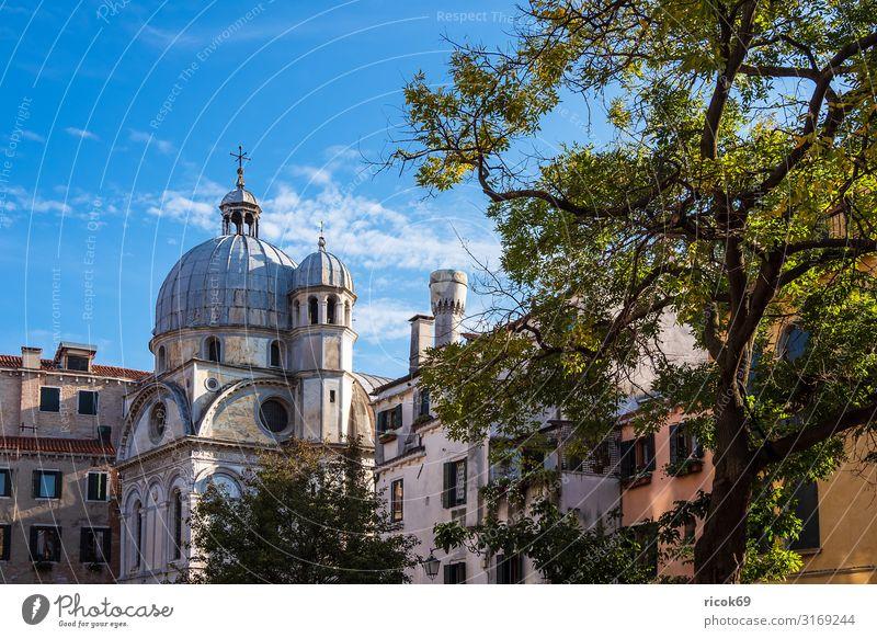 Historische Gebäude in der Altstadt von Venedig in Italien Ferien & Urlaub & Reisen Tourismus Haus Wolken Baum Stadt Bauwerk Architektur Sehenswürdigkeit alt