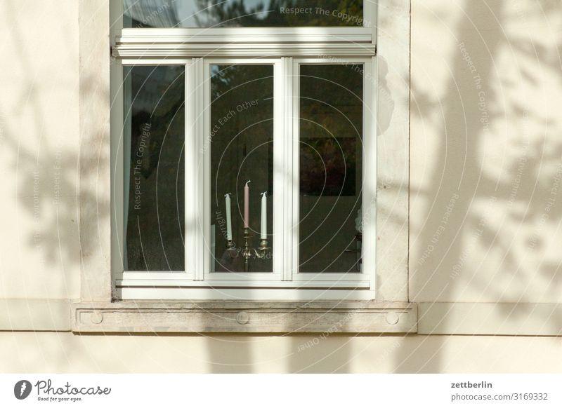 Kerzen im Fenster Altstadt Architektur Stadt Häusliches Leben Wohnhaus Fassade Fensterscheibe Leuchter 3 Licht hell Sonne Schatten Baum Baumstamm Ast Zweig