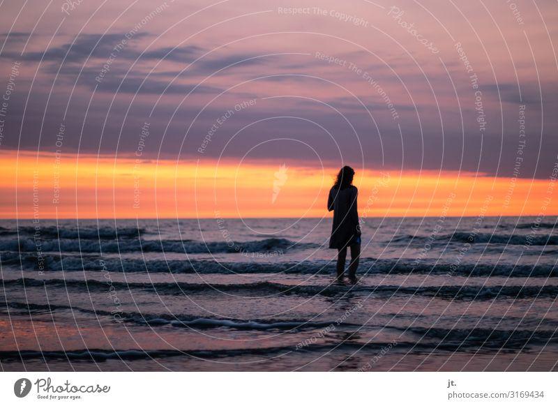 Sonnenuntergang an der Nordsee Lifestyle Glück Wohlgefühl Zufriedenheit Erholung ruhig Ferien & Urlaub & Reisen Tourismus Ausflug Freiheit Sommer Sommerurlaub