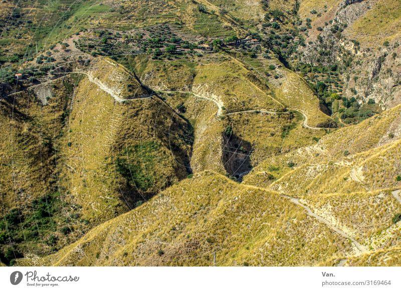 Running up that hill Ferien & Urlaub & Reisen wandern Natur Landschaft Pflanze Herbst Gras Sträucher Hügel Felsen Berge u. Gebirge Wege & Pfade grün Farbfoto