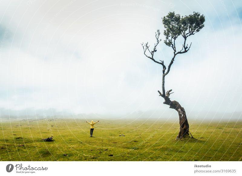 Die Natur lieben Lifestyle Glück schön Freizeit & Hobby Ferien & Urlaub & Reisen Ausflug Abenteuer Freiheit wandern Frau Erwachsene Umwelt Landschaft Nebel Baum