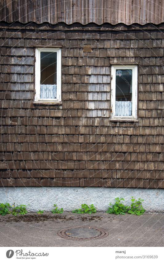 Der schräge Blick Einfamilienhaus Gebäude Mauer Wand Fenster Schindelwand Dachziegel Holz alt außergewöhnlich Zusammensein einzigartig braun Idylle verwittert