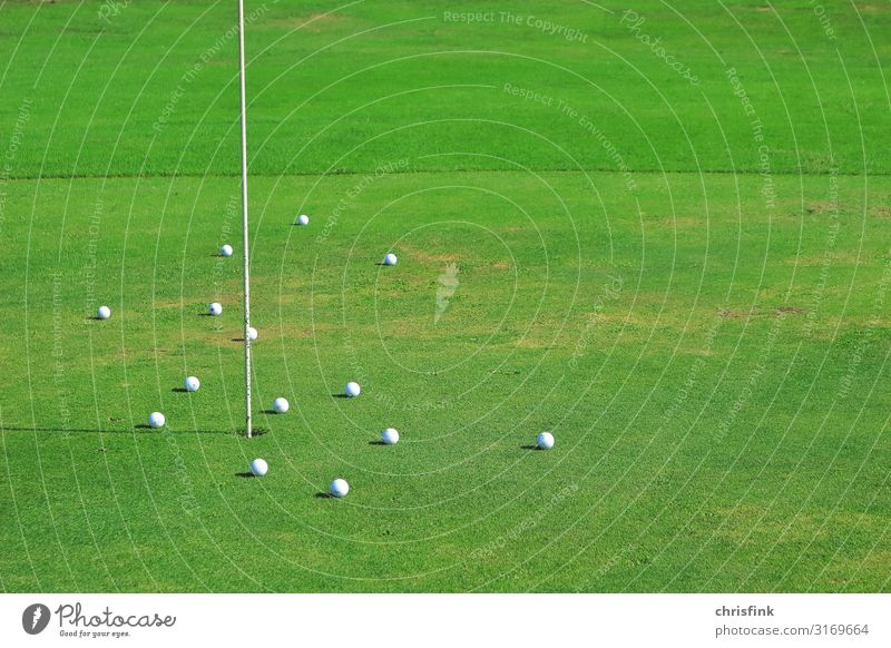 Golfbälle auf Green an Fahne Lifestyle Freizeit & Hobby Spielen Beruf Kunst genießen Sport Gefühle Freude Glück schön Golfplatz green Loch putting greenkeeper