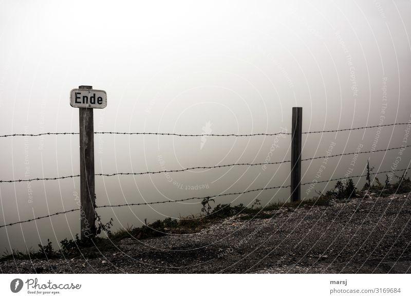 Wochen-Ende Natur Herbst schlechtes Wetter Nebel Stacheldrahtzaun Schilder & Markierungen Hinweisschild Warnschild dunkel Einsamkeit Warnhinweis bedrohlich