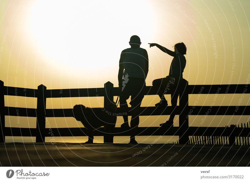 Schau mal! Abenteuer Ferne Freiheit Strand Meer Kind Vater Erwachsene Körper 2 Mensch Sonnenlicht Sommer Schönes Wetter Küste Atlantik Hund Zaun beobachten
