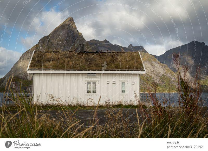 Dachbegrünung Ferien & Urlaub & Reisen Umwelt Natur Landschaft Wolken Herbst Wiese Berge u. Gebirge Fjord Reinefjorden Reine Rorbuer Norwegen Lofoten