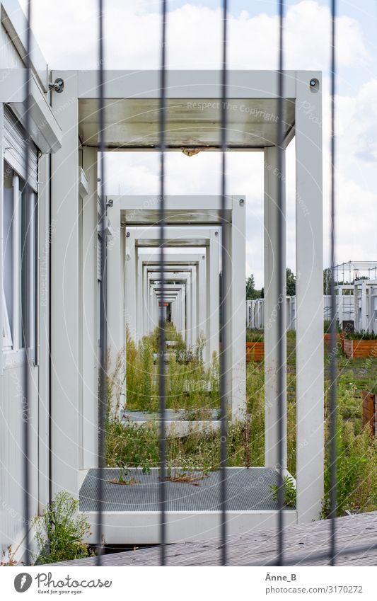 Verlassen Wohnung Wohncontainer Architektur Pflanze Gras Grünpflanze Wildpflanze Unkraut Gebäude Container heimatlos Wohnheim Unterkunft Notunterkunft Eingang