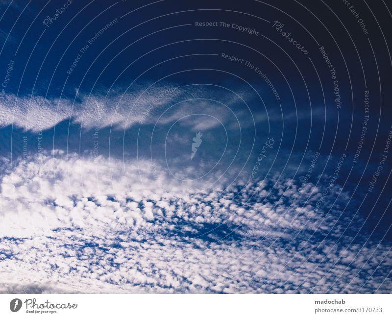 Wolken Umwelt Himmel nur Himmel Klima Klimawandel Wetter ästhetisch elegant frei Unendlichkeit hell kalt schön blau weiß Hoffnung Glaube demütig Farbfoto